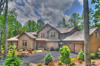 Banner Elk Single Family Home For Sale: 635 Raven Ridge Road