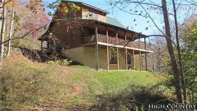 Avery County Single Family Home For Sale: 51 Highland Drive