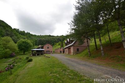 Ashe County Single Family Home For Sale: 251 Shepherd Hollow Road