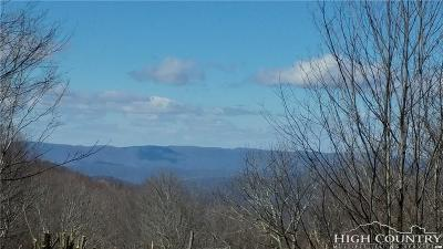 Beech Mountain Single Family Home For Sale: 117 Greenbriar Road