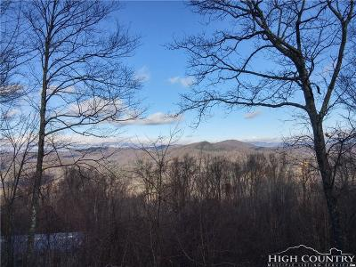 Ashe County Single Family Home For Sale: 550 Misty Mountain Road