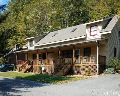 Watauga County Multi Family Home For Sale: 138 The Ponds Road