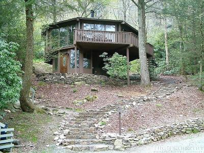 Sugar Mountain Single Family Home For Sale: 633 Briarcliff Road