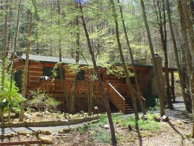 Ashe County Single Family Home For Sale: 200 Creek Ln