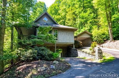 Watauga County Single Family Home For Sale: 373 The Settlement Road