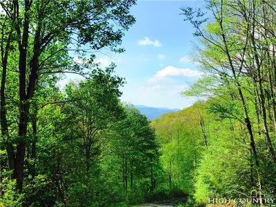 Avery County Residential Lots & Land For Sale: Tbd Turbyfill Road