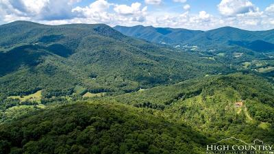 Ashe County Residential Lots & Land For Sale: Tbd White Tail Drive