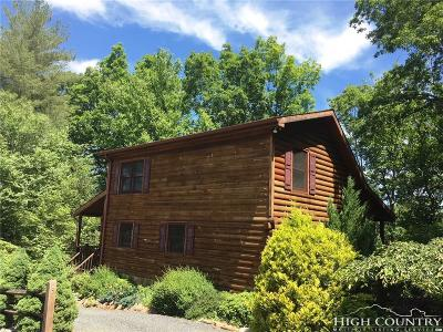 Ashe County Single Family Home For Sale: 297 S Turkey Ridge