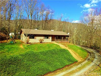 Watauga County Single Family Home For Sale: 187 Blues Drive