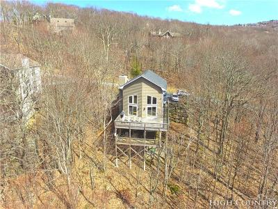 Beech Mountain Single Family Home For Sale: 110 Upper Snowbird Trail