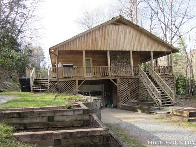 Watauga County Single Family Home For Sale: 243 River View Ln