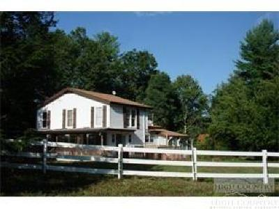 Avery County Single Family Home For Sale: 727 Stamey Branch Roads