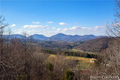 Boone Single Family Home For Sale: 274 Archie Carroll