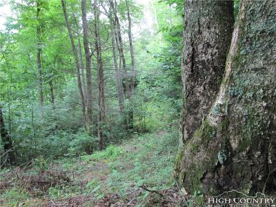 Avery County, Watauga County Residential Lots & Land For Sale: Lot 10 Shadow Stream Lane