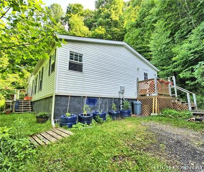 Ashe County Single Family Home For Sale: 4174 Big Horse Creek