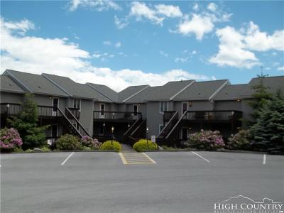 Sugar Mountain Condo/Townhouse For Sale: 161 Skyleaf Drive #E-12