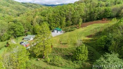 Avery County Single Family Home For Sale: 80 Roby Ford