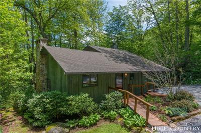 Avery County Single Family Home For Sale: 181 Mossy Creek Lane