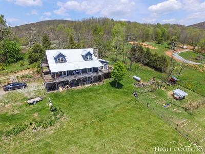 Watauga County Single Family Home For Sale: 480 David Sides Road