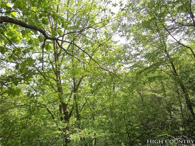 Avery County, Watauga County Residential Lots & Land For Sale: 1465 Pine Ridge Road