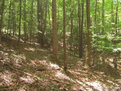 Avery County, Watauga County Residential Lots & Land For Sale: 147 Raccoon Road