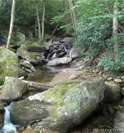 Avery County, Watauga County Residential Lots & Land For Sale: 123 Buckeye Ridge Road