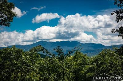 Avery County, Watauga County Residential Lots & Land For Sale: 179 Lodge Woods Trail