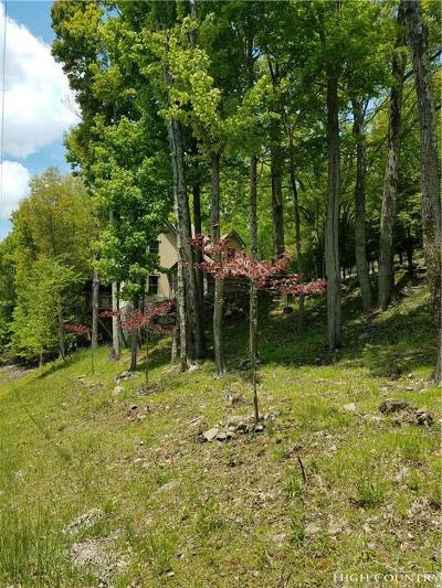Watauga County Single Family Home For Sale: 508 Saint Andrews Road