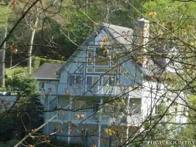 Avery County Single Family Home For Sale: 888 Hemlock Drive