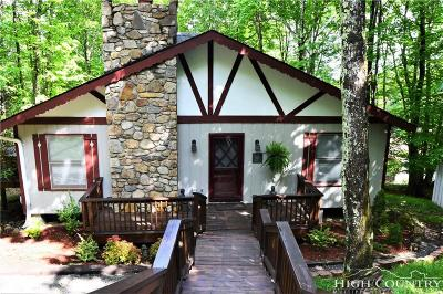 Watauga County Single Family Home For Sale: 222 Spring Branch Road