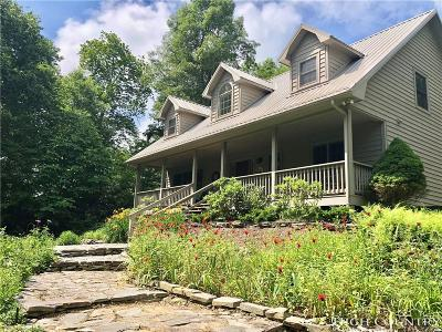 Watauga County Single Family Home For Sale: 317 Red Wolf