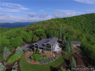 Ashe County Single Family Home For Sale: 600 W Big Tree Road