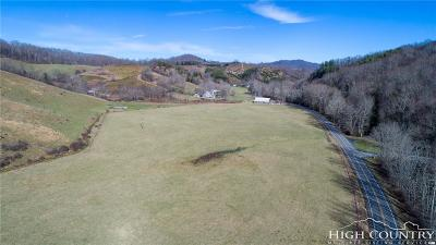 Ashe County Residential Lots & Land For Sale: Tbd 194 North Highway