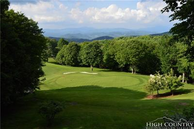 Watauga County Single Family Home For Sale: 214 Grassy Gap Loop Road
