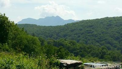 Avery County Residential Lots & Land For Sale: 1117 Sugar Mountain 2 Road