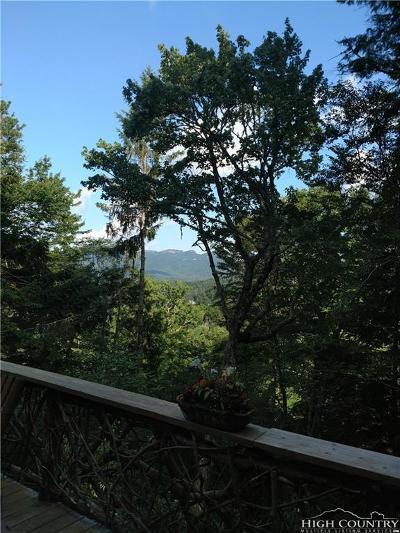 Sugar Mountain Single Family Home For Sale: 441 Highland Circle