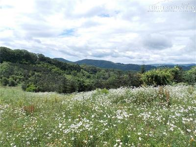 Avery County Residential Lots & Land For Sale: Tbd Edgar Tufts Road
