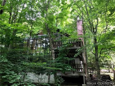Beech Mountain Single Family Home For Sale: 204 Spring Branch Road