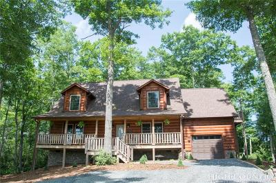 Ashe County Single Family Home For Sale: 810 New River Overlook