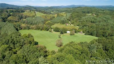 Alexander County, Burke County, Caldwell County, Ashe County, Avery County, Watauga County Residential Lots & Land For Sale: 3902 Grassy Creek Road