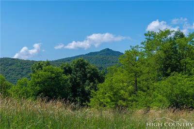 Avery County, Watauga County Residential Lots & Land For Sale: Tbd Lee Gualtney Road