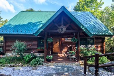 Avery County Single Family Home For Sale: 31 Laurel Lane