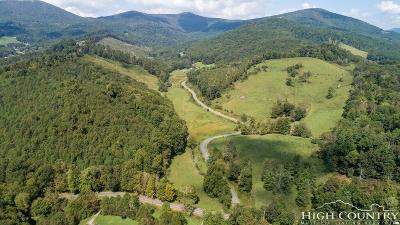 Alexander County, Burke County, Caldwell County, Ashe County, Avery County, Watauga County Residential Lots & Land For Sale: 272 Willett Miller Road