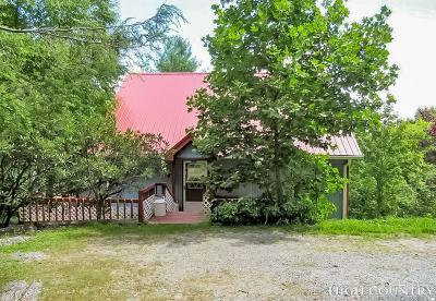 Watauga County Single Family Home For Sale: 144 Mogul Road