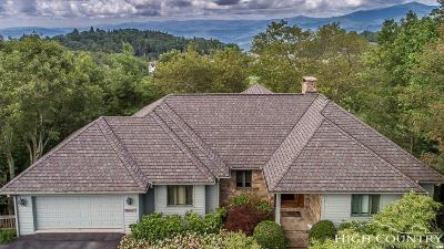 Watauga County Single Family Home For Sale: 463 W Green Hill Drive