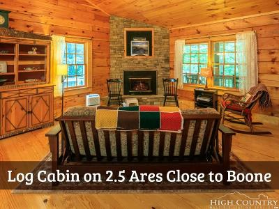 Watauga County Single Family Home For Sale: 730 Silver Leaf Road