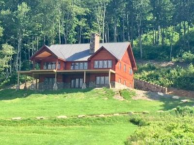 Avery County Single Family Home For Sale: 980 Eagles Nest Trail