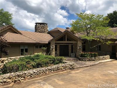 Alexander County, Burke County, Caldwell County, Ashe County, Avery County, Watauga County Single Family Home For Sale: 225 Ridge Drive