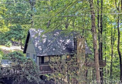 Deep Gap Single Family Home For Sale: 751 E Horse Shoe Ridge Road