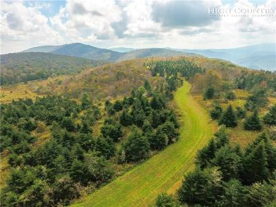 Avery County, Watauga County Residential Lots & Land For Sale: Lot 6 Woodland Springs Lane